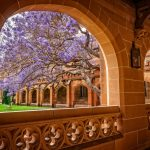 University of Sydney announces new campus